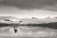 Sea kayaking on Lake McDonald in autumn in Glacier National Park, Montana, USA model released