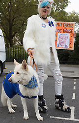 October 7, 2018 - London, England, United Kingdom - Anti-Brexit dog owners and pets join the #Wooferendum dog march to Westminster for a 'people's vote' on Brexit. (Credit Image: © Louise Wateridge/ZUMA Wire)