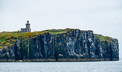 Low Light Lighthouse on Isle of May National Nature Reserve, Firth of Forth, Scotland, UK