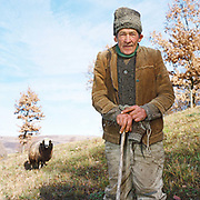 Portrait of an elderly shepherd wearing a traditional hat and handknitted cardigan with a sheep in the meadows around the village of Poienile Izei, Maramures, Romania