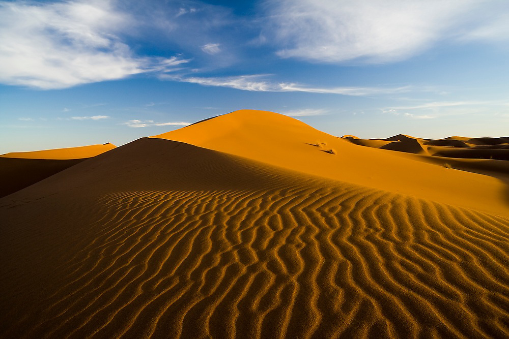 Ripples in the sand are highlighted by a low angled sun at the large sand dunes of Erg Zehar, near M'hamid Morocco.