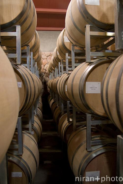 Wine Casks at Mendoza Winery