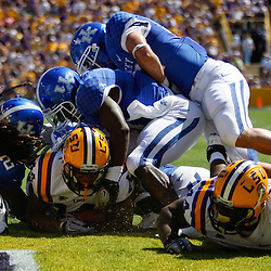 October 1, 2011; Baton Rouge, LA, USA;  LSU Tigers running back Terrence Magee (14) scores against the Kentucky Wildcats during the fourth quarter at Tiger Stadium. LSU defeated Kentucky 35-7. Mandatory Credit: Derick E. Hingle-US PRESSWIRE / © Derick E. Hingle 2011