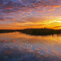 South Florida sunset panorama photography from nature photographer Juergen Roth showing a magical sunset at Loxahatchee National Wildlife Refuge located west of Boynton Beach in Palm Beach County, FL. Arthur R. Marshall Loxahatchee National Wildlife Refuge is an incredible nature area for viewing wildlife and landscape photography in Florida. <br /> <br /> Florida sunset panorama photos of the Arthur R. Marshall Loxahatchee National Wildlife Refuge area are available as museum quality photo prints, canvas prints, wood prints, acrylic prints or metal prints. Wall art prints may be framed and matted to the individual liking and decorating needs:<br /> <br /> https://juergen-roth.pixels.com/featured/loxahatchee-sunset-juergen-roth.html<br /> <br /> All digital landscape photo images are available for photography image licensing at www.RothGalleries.com. Please contact me direct with any questions or request.<br /> <br /> Good light and happy photo making!<br /> <br /> My best,<br /> <br /> Juergen<br /> Prints: http://www.rothgalleries.com<br /> Photo Blog: http://whereintheworldisjuergen.blogspot.com<br /> Instagram: https://www.instagram.com/rothgalleries<br /> Twitter: https://twitter.com/naturefineart<br /> Facebook: https://www.facebook.com/naturefineart
