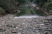 CHONGQING, CHINA - CHINA OUT) <br /> <br /> Serious Pollution Hits Reservoir<br /> <br /> Wastes float on a reservoir  in Chongqing, China. Serious pollution hit a reservoir in Chongqing. Some citizens did illegal fishing at the polluted reservoir. <br /> ©Exclusivepix Media