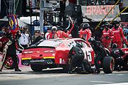 September 28-30, 2018. Charlotte Motorspeedway, Xfinity Series, Drive for the Cure 200: Katherine Legge, JD Motorsports, Chevrolet