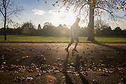 Sunlit jogger and autumn leaves in Dulwich Park, London borough of Southwark.