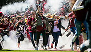 Gamecocks students run onto the field with players during the 2001 entrance before the 2016 Garnet & Black Game at Williams-Brice Stadium in Columbia, SC.