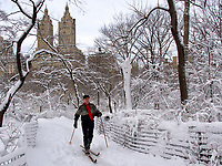 Skiier in the Ramble of Central Park