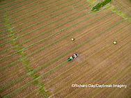 63801-11009 Baling hay in alfalfa field-aerial Marion Co. IL