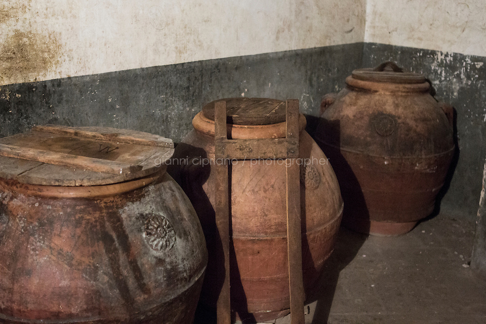 """CALENZANO, ITALY - 24 NOVEMBER 2014: Olive oil earthenware jars (""""orcie"""" in Italian) are stored here in the farm of olive oil producer Federico Dufour in Calenzano, 20 kilometers north of Florence, Italy, on November 24th 2014.<br /> <br /> The olive harvest was practically non-existent this fall in Calenzano because of the Bactrocera oleae, an olive fruit fly that this year ravaged entire olive crops. Italy's Institute of Services for Agriculture and Food Market, or ISMEA, calculated that olive oil production fell on average by 35 percent from 302,000 tons from 463,000 the previous year."""