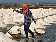 10 FEBRUARY 2016 - BAN LAEM, PHETCHABURI, THAILAND: A salt field worker carries baskets of salt to the salt barn at the beginning of the salt harvest in Phetchaburi province of Thailand. The salt harvest in Thailand usually starts in February and continues through May. Salt is harvested in many of the provinces along the coast, but the salt fields in Phetchaburi province are considered the most productive. The salt fields are flooded with sea water, which evaporates off leaving salt behind. Salt production relies on dry weather and producers are hoping the current drought will mean a longer harvest season for them.      PHOTO BY JACK KURTZ