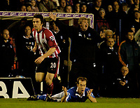 Fotball<br /> England 2004/2005<br /> Foto: SBI/Digitalsport<br /> NORWAY ONLY<br /> <br /> Birmingham City v Southampton<br /> Barclays Premiership. 02/02/2005.<br /> Birmingham's manager Steve Bruce (R) appeals to the referee as he believes Jamie Clapham (C) was fouled by David Prutton