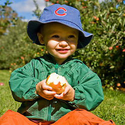 A young boy (age 1) eats an apple in an orchard at Butternut Farm in Rochester, New Hampshire.