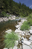 North Fork of the Feather River.