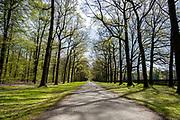 APELDOORN, 09-06-2021 , Kroondomein Het Loo<br /> <br /> Kroondomein Het Loo is een landgoed op de Veluwe, in de Nederlandse provincie Gelderland. Het is het grootste landgoed van Nederland en omvat ongeveer 10.400 hectare.<br /> <br /> Op de foto:  Koningslaan