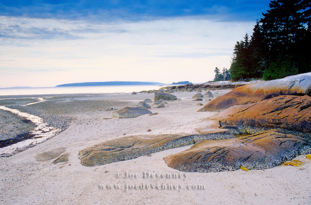 Boulders at low tide. Blue Hill Bay. Castine, Maine