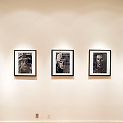 Detail of installation of prints from the Fighting Season body of work hanging in the Honfleur Gallery in 2011 in Washington DC