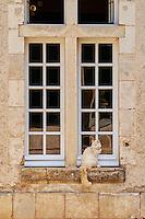 France, Cher (18), Berry, Château et jardin De Pesselières, route Jacques Coeur // France, Cher (18), Berry, castle and garden of Chateau De Pesselières, the Jacques Coeur road