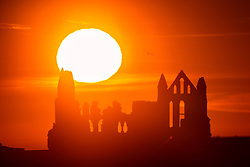 © Licensed to London News Pictures. 30/03/2021. Whitby UK. The sun rises this morning behind the gothic ruins of Whitby Abbey on the Yorkshire coast as the UK looks set for warm weather. Photo credit: Andrew McCaren/LNP