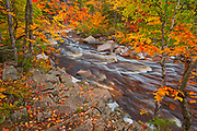 Mary-Anne Falls in the Acadian forest in autumn foliage <br />Cape Breton Highlands National Park<br />Nova Scotia<br />Canada