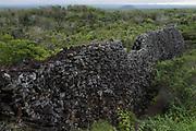 Wall of Tears<br /> Puerto Villamil<br /> Isabela Island, <br /> GALAPAGOS,  Ecuador, South America