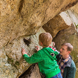 A boy and his father find an old swallow's nest on the underside of a large glacial erratic in the Stonehouse Forest in Barrington, New Hampshire.
