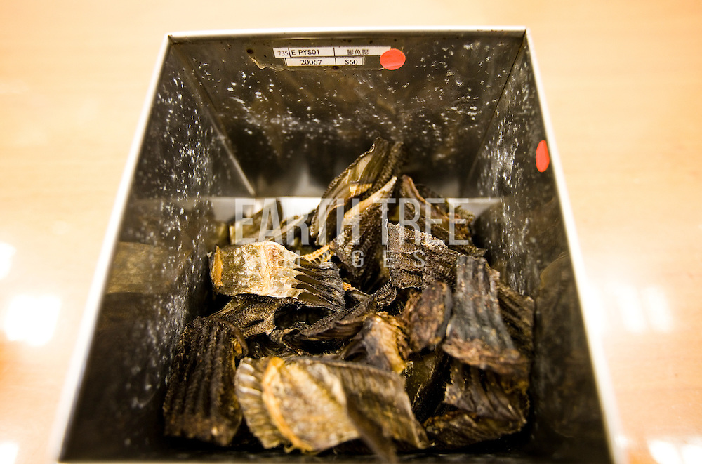 """A traditional Chinese medicine shop sells manta ray gill plates. Demand for gill rakers is the largest driver for manta and mobula ray fisheries. Anecdotes gathered through investigations and literature searches suggest that gill rakers, which consist of thin filaments that manta and mobula rays use to filter food from the water column, can treat health issues ranging from chicken pox to cancer. Some practitioners claim that gill rakers, known in China as """"Peng Yu Sai,"""" boost the immune system and help purify the body by reducing toxins and fever and enhancing blood circulation. Others claim that gill rakers will remedy throat and skin ailments, male kidney issues, and help couples with fertility problems. Photo: Paul Hilton / Earth Tree Images"""