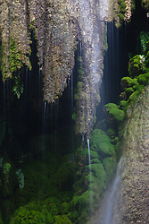 Waterfall, Gorman Falls State Park in the Texas Hill Country, Texas, USA.
