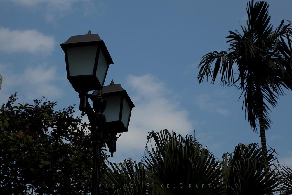 A Hong Kong Street Lamp