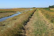 River Ore salt marsh coastal flood defence bank and footpath, looking towards Shingle Street, Hollesley, Suffolk, England, UK