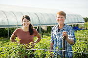Researcher Julie Dawson and graduate student Kitt Healy inspect the research farm at the University of Wisconsin, Madison.
