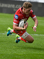 Rugby Union - 2021 Guinness Pro14 Rainbow Cup - Northern Section - Scarlets vs Cardiff Blues - Parc-y-Scarlets<br /> <br /> Angus O'Brien Scarlets scores a try  to give scarlets the lead <br /> <br /> COLORSPORT/WINSTON BYNORTH