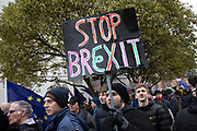 Anti Brexit pro Europe demonstrators protest waving European Union and Union Jack flags in Westminster on the day of the 'meaningful vote' when MPs will back or reject the Prime Minister's Brexit Withdrawal Agreement on 15th January 2019 in London, England, United Kingdom.