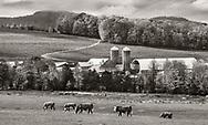 Vermont Farm, USA