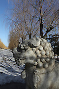 China, Beijing, Ming Dynasty Tombs, Changling Tomb, statues of a lion lining the sacred way