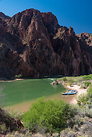 This beach is a popular stop for rafting trips through the Grand Canyon since it's next to Phantom Ranch.
