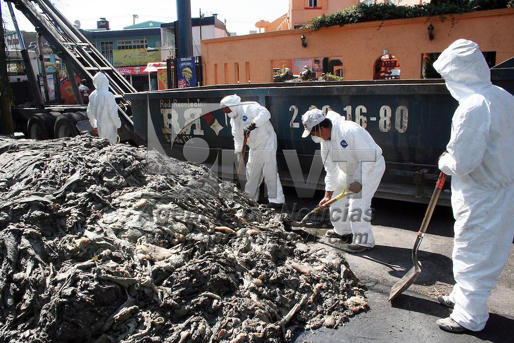 Metepec, Mex.- Un camión de basura derramo residuos de animales en sobre la vialidad Pino Suárez después de que su puerta trasera se abriera, trabajadores de la empresa Red Recolector tardaron más de una hora en recoger los desechos que se presumen tóxicos por el olor tan penetrante que se mantuvo en la zona. Agencia MVT / Crisanta Espinosa. (DIGITAL)<br /> <br /> NO ARCHIVAR - NO ARCHIVE