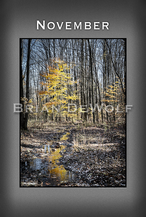 """24"""" x 36""""   This poster is  individuallly printed, to order,  on luster poster-weight paper. Price is $50 and can be paid by mail or by Paypal. Order using the Contact Form on this website."""