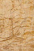 Petroglyph in the Red Desert of Wyoming