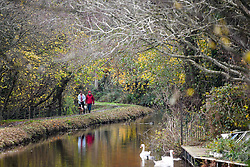 © Licensed to London News Pictures. 17/11/2020. Brecon, UK. People walk along the banks of the Monmouthshire and Brecon Canal in Brecon, Wales on a typical Autumn day as blustery and wet weather grips the UK and is forecast to remain throughout the week. Photo credit: Robert Melen/LNP