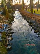 Wyomissing Creek and Arboretum, Reading Public Museum, Reading PA