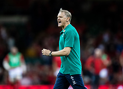 Joe Schmidt during the pre match warm up<br /> <br /> Photographer Simon King/Replay Images<br /> <br /> Friendly - Wales v Ireland - Saturday 31st August 2019 - Principality Stadium - Cardiff<br /> <br /> World Copyright © Replay Images . All rights reserved. info@replayimages.co.uk - http://replayimages.co.uk