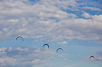 Kiteboard kites fill the air on a summer day near Hood River, Oregon on the Columbia River.