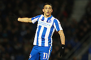 Brighton & Hove Albion winger Anthony Knockaert during the EFL Sky Bet Championship match between Brighton and Hove Albion and Sheffield Wednesday at the American Express Community Stadium, Brighton and Hove, England on 20 January 2017. Photo by Bennett Dean.