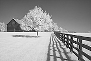 Barn and pasture at Keeneland, Lexington, KY.  Infrared (IR) photograph by fine art photographer Michael Kloth. Black and white infrared photographs