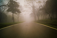 Deserted road in Ba Vi National Park during a foggy day, Vietnam, Southeast Asia
