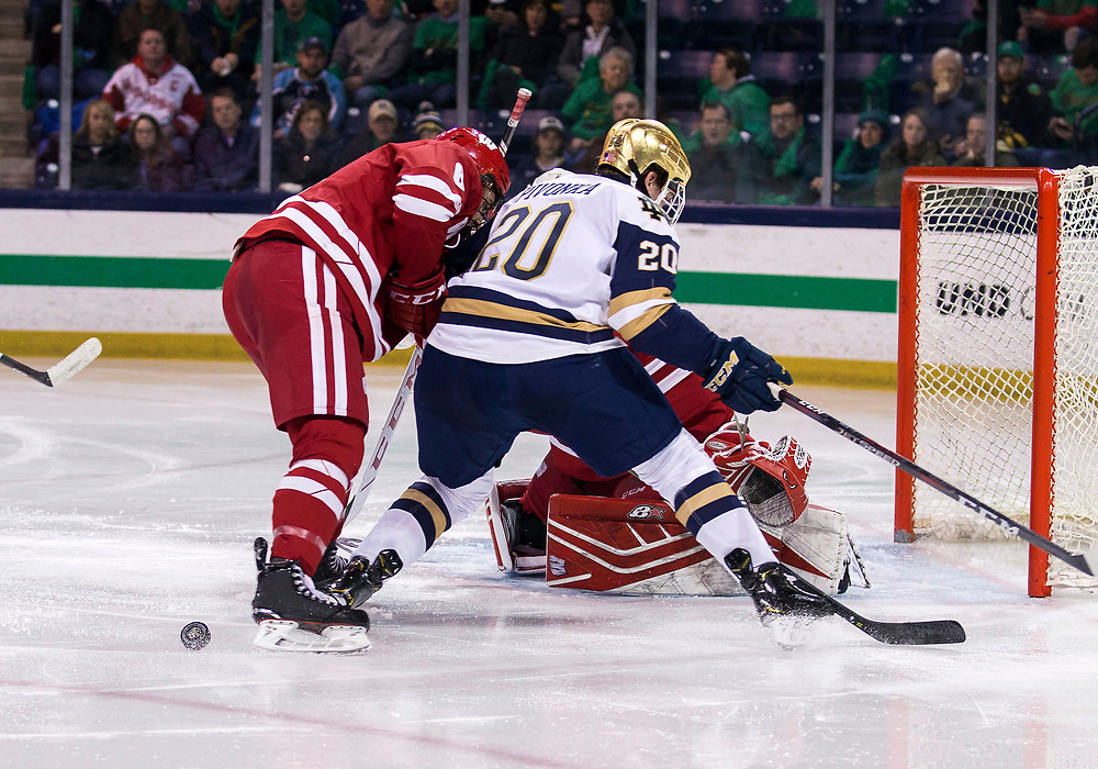 February 15, 2019:  Notre Dame forward Jake Pivonka (20) and Wisconsin defenseman Peter Tischke (6) during NCAA Hockey game action between the Wisconsin Badgers and the Notre Dame Fighting Irish at Compton Family Ice Arena in South Bend, Indiana.  Wisconsin defeated Notre Dame 2-1.  John Mersits/CSM