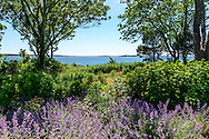 Flowers, Bay View Court, Sag Harbor, North Haven, NY