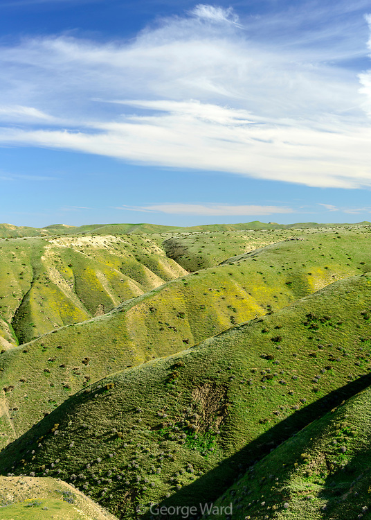 Panoche Hills Wilderness Study Area in Spring, Fresno County, California
